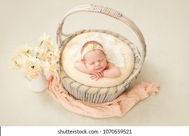 Photoshoot of a sleeping newborn girl in a basket with a bandage on her head, a gentle image of spring, a jar with daffodils