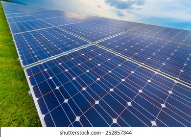 Photovoltaic modules and green grass