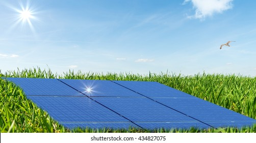 Photovoltaic panels in a photovoltaic park
