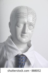 Phrenological head in business attire