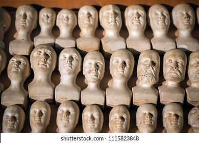Phrenology study case, miniature phrenological heads
