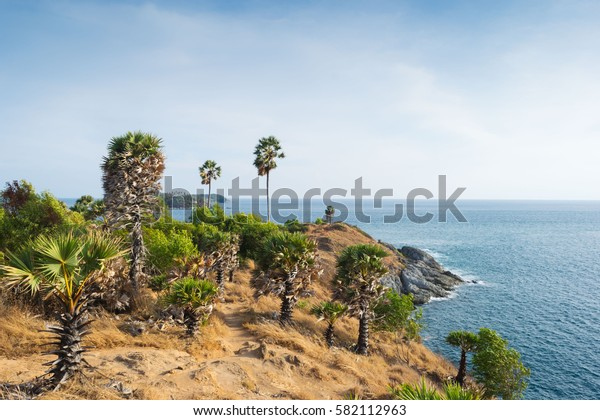 Phrom Thep Cape is one of the attractions of Phuket. Located about two kilometers from the Rawai Cape is at the southern end of Phuket. Beautiful scenery And watch the sunset are popular.