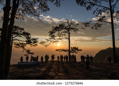 Phu Kradueng National Park, Loei, Thailand, On 23 December,2018, tourists traveling in the winter at Phu Kradueng National Park in Thailand.
