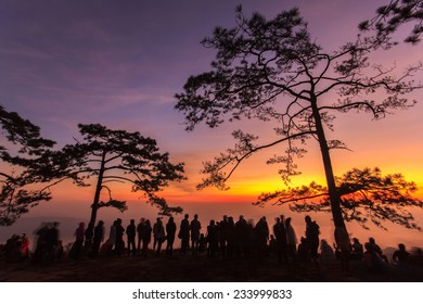 Phu Kradueng National Park at Sunrise in Loei Province of thailand