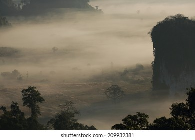 Phu Lanka , Phayao , Thailand , tree and mountain in morning mist waiting for sunrise