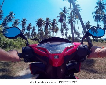 Phuket, Phuket /Thailand - 10/10/2015: a view from hands the helm of a Honda motorcycle in the palm forest of phuket