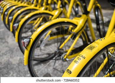 PHUKET, THAILAND - SEP 30, 2017: yellow bicycles in bike sharing project, scan to go, launch on Sep 20, managed by government, supported by Obike and Ofo, bicycle rental companies, phuket, Thailand