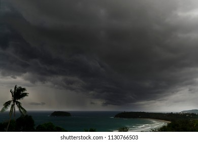 Phuket, Thailand. Strong storm wind sways the trees and breaks the leaves. In The ocean is heavy rain. The weather turned bad. Declared a storm warning. Low season travel in Phuket.