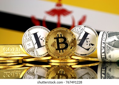 Physical version of Bitcoin, Litecoin, gold, US Dollar and Brunei Flag. Conceptual image for investors in cryptocurrency, gold and dollars.