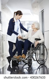 Physiotherapist Consoling Senior Patient In Wheelchair