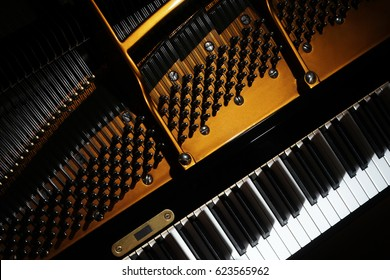 Piano close up. Grand piano detail Open inside music instrument closeup