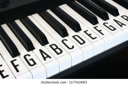 Piano keyboard keys with letters of notes of the scale superimposed as a music cheat sheet for a new learner