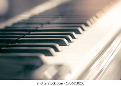 Piano and keyboard piano, Music instrument. Black and white key. side view of instrument musical tool.
