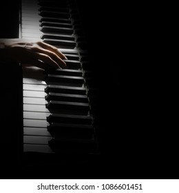 Piano player. Pianist playing piano. Hands with music instrument closeup. Piano keys