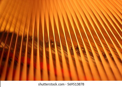 Piano Strings Close-Up Depth of Field