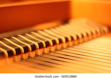 Piano Strings and Dampers Close-Up