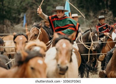 Pichilemu, Sexta Region / Chile - February 03 2018: Chilean Horse man riding his horse in a traditional summer event.