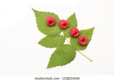 picked ripe raspberries on a green raspberry leaf, isolated on white background
