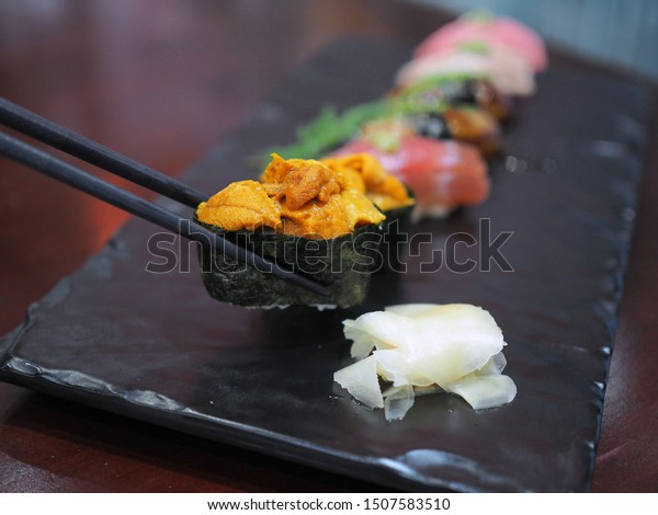 Picking a piece of fresh uni or sea urchin sushi with chopsticks. Japanese traditional food. Selective focus.