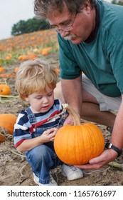 Picking a Pumpkin, father and son
