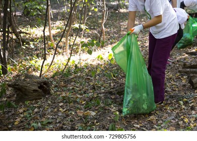 Picking up trash in the forest. Ecology person cleaning the park. Unrecognizable people.