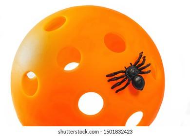 Pickleball Halloween Spider on white background. Black spider on Pickleball.