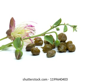 Pickled capers with caper plant leaves and flower on white background