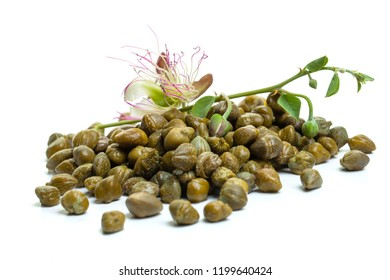 Pickled capers with caper plant on white background