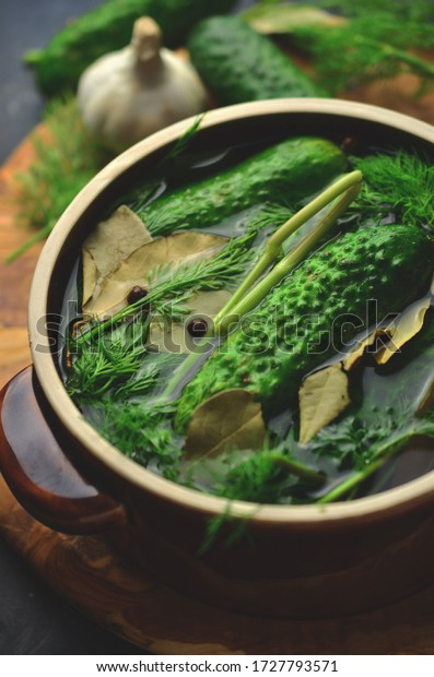 Pickled cucumbers in clay pot, homemade