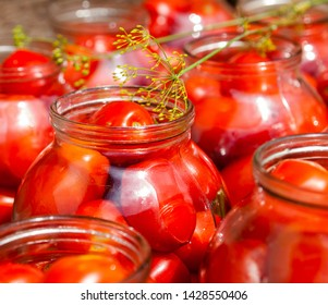 Pickling (canning) the tomatoes. Glass jars with tomatoes.