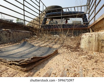 The pickup track is dumped until a grass grow up onto the pickup floor.