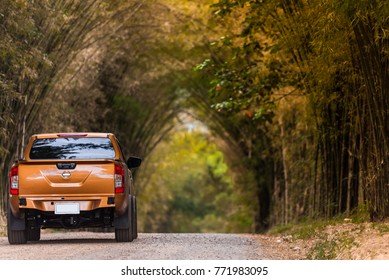 Pickup truck on the dirt road The two sides of the bamboo and dense bamboo tip bent end togetherLooks like a natural tunnel beautiful nature background.