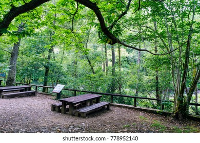 Picnic area with tables and wooden benches next to the river Eume in Galicia, Spain. Zone very wooded and very green. Without people