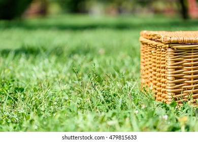 Picnic Basket Hamper With Leather Handle In Green Grass