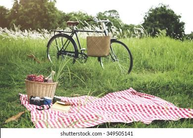 Picnic Basket Handbag Vacation Leisure Lifestyle Concept