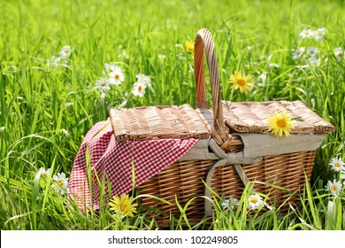 Picnic basket on the grass field