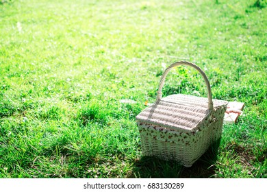Picnic basket on green lawn. Outdoor picnic at sunny day. Vintage basket.