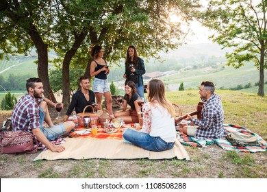 Picnic in the countryside. Group of young friends, at sunset on spring day, are sitting on the ground in a park near trees. They drinking red wine and eating grilled meat with barbecue