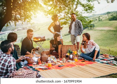 Picnic in the countryside. Group of young friends, at sunset on spring day are sitting on the ground in a park near trees. They drinking red wine and eating grilled meat with barbecue