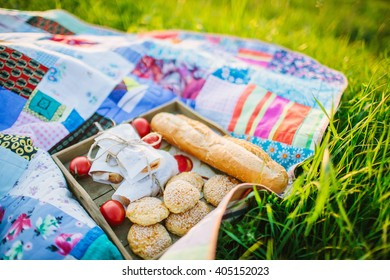 Picnic  with healthy sandwiches, tomatoes, cookies on tray on quilt outdoors.