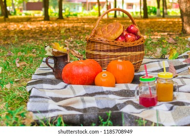 picnic in nature. wicker basket on a plaid plaid. around yellow foliage, drinks, pumpkins and apples, a loaf of bread a jug.