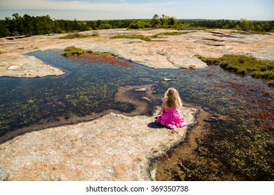 Picnic on Arabia Mountain