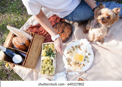 Picnic on the grass near river on lazy summer day. Young smiling woman with small dog relaxing on nature