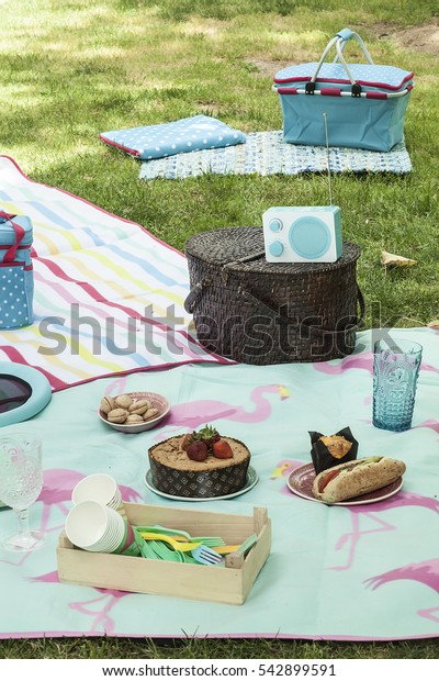 Picnic in the Park