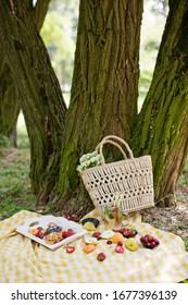 Picnic at the park. Fresh fruits and tarts on a white wooden tray, straw bag with white chamomiles near tree