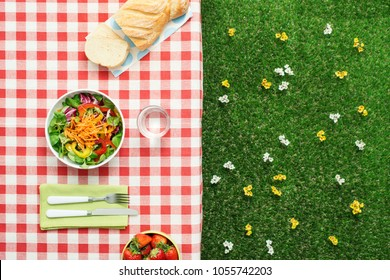 Picnic salad meal on a checked tablecloth, grass and flowers on the background