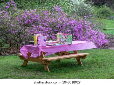 Picnic Table Dressed up for a Child's Birthday Party