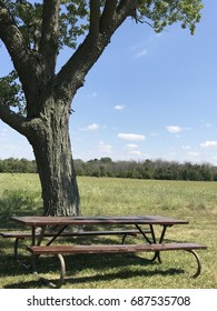 Picnic table on summer day