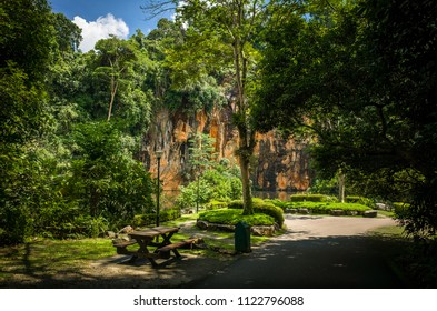 Picnic table in the shade at Butik Batok Reservoir, a public park in the jungles of Singapore