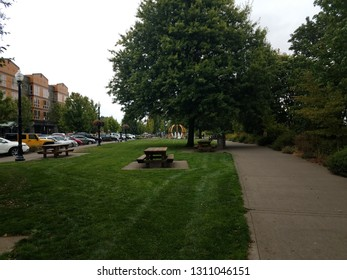 picnic tables and green grass in park in Corvallis, Oregon